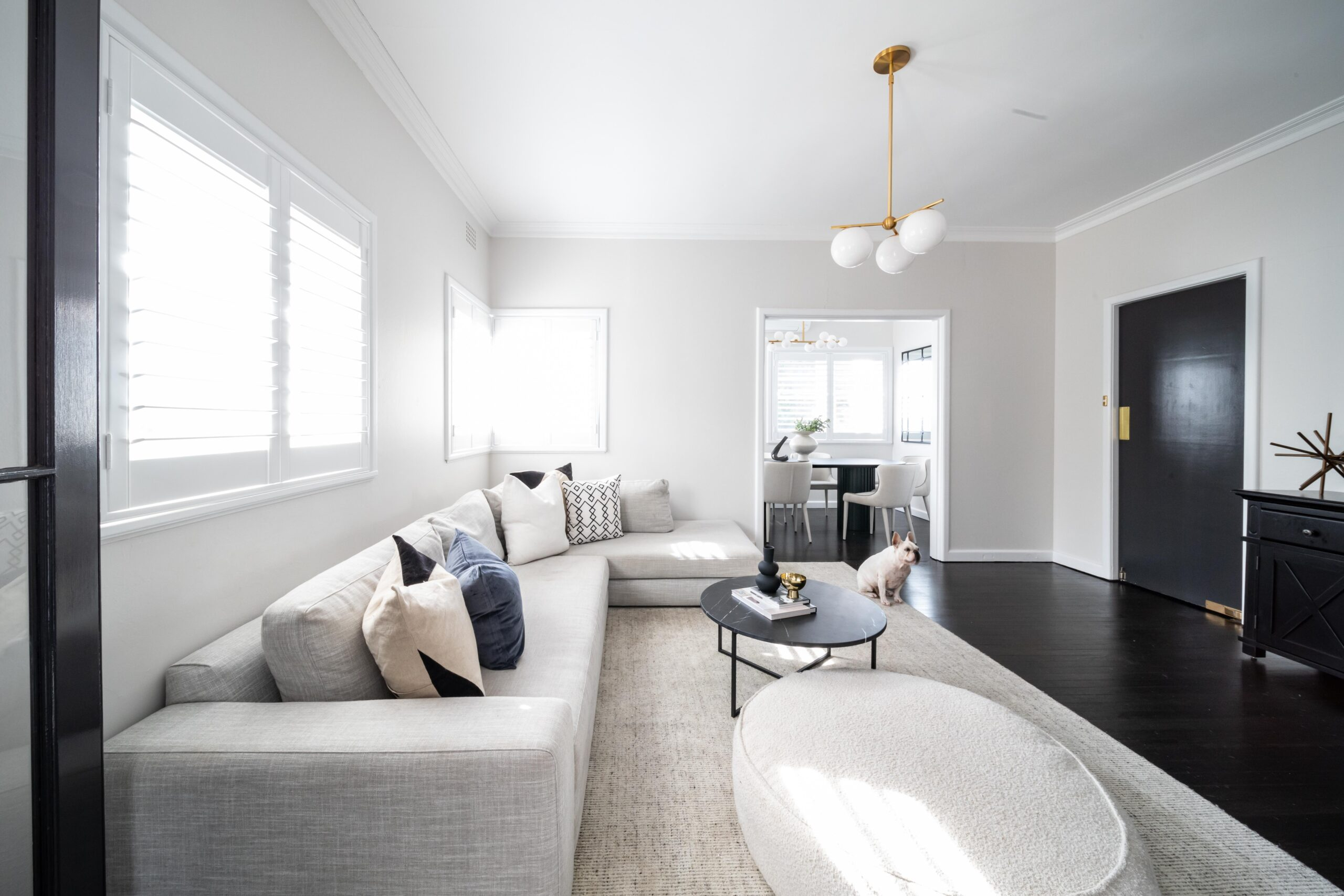 Bright living room design with dog